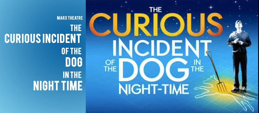 The Curious Incident of the Dog in the Night-Time at Marx Theatre